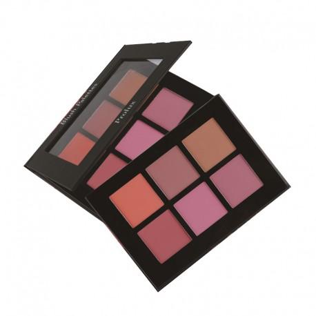 Blush Palette Prolux